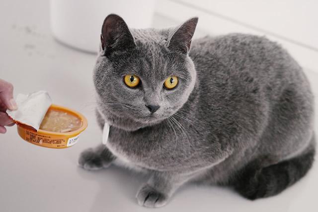 猫背 名古屋1