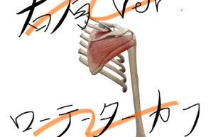 四十肩、五十肩の原因は【ローテーターカフ】にあり!?