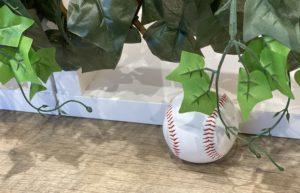 ストレッチトレーナーが教える【野球】に必要なストレッチ!