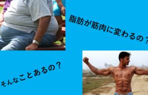 脂肪は筋肉に変わるの?