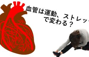 動脈硬化には運動、ストレッチ!