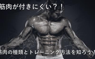 【筋肉】に違いがある?筋肉が付きやすい人、付きにくい人の違いって何?