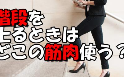 【膝痛】の原因はこれだ!正しい階段の上り方~股関節の柔軟性UPにも効果的!?~