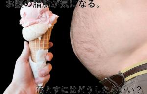 【皮下脂肪・内臓脂肪】脂肪について知ろう!