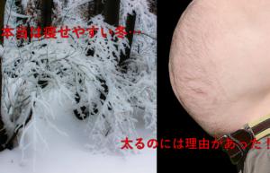 冬は太りやすいってウソ?ホント?